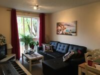 1 bedroom flat Shirley clean and nice!!!