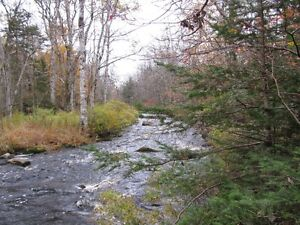 250 Acres with Gold River Frontage