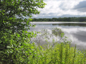 14 Acres Of Incredible Waterfront On The Kennebecasis Marsh!