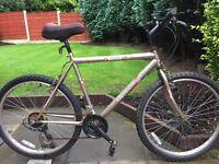 adults active optimist mountain bike