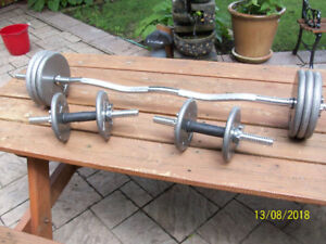 Curl Bar and short bars and steel weights.