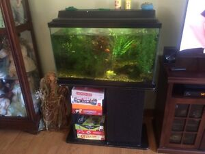 30 gal tank stand and accessories