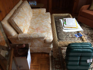 Moving Sale- couch and also a coffee table