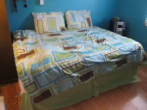 Comforter - Double + Curtains and Bed Skirt