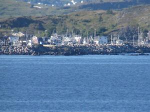 12 A SHARK COVE ROAD, OCEAN VIEWS…SPECTACULAR!! St. John's Newfoundland image 2