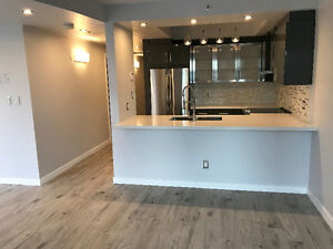 FOR LEASE: NEWLY RENOVATED 2 LEVEL PENTHOUSE IN DOWNTOWN
