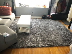 Large floor rug/Carpet