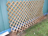 ONE 4 FT  x 8 FT  LATTICE  SHEET