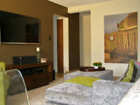 Downtown Furnished Executive Suite