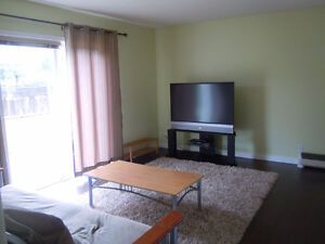 Prime Location Bright 2 Bedroom suite Furnished + Utilities