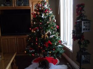 Christmas Tree with decorations!