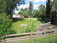 0.24 Acre Fenced Lot in Tomahawk