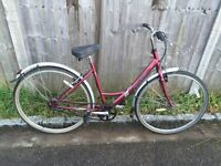 Raleigh Caprice Ladies Town Bike. Serviced, Free Lock/Lights/Delivery