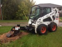 Stump grinding stump removal