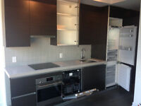 1 bedroom (no parking)new at Thompson residencies on King Street