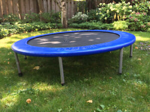 Good quality sturdy 54 in trampoline