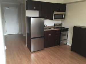 Newly Renovated Bachelor Apartments Available! Stratford Kitchener Area image 1