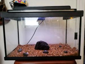Aquarium 10 gallon