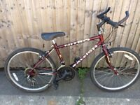 Raleigh nitro teenage mountain bike serviced ready to ride
