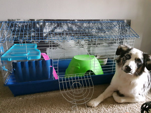 Guinea Pig/ Rabbit cage for sale