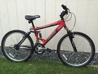 Arashi Mountain Bike
