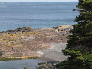 BACON COVE RD, AWESOME OCEAN VIEWS..BACON COVE.. St. John's Newfoundland image 13