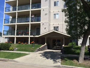 Owner travels extensively 2 bdrm, 2 bath condo in Leduc $800