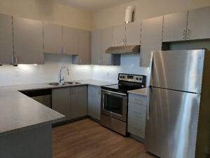 By far the best place to live in Hamilton. Condo style apartment