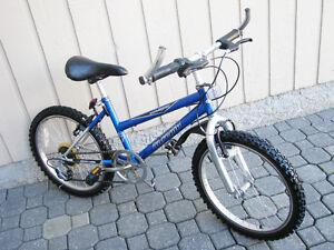 INTREPID Boys Bike - 20 Inch wheels