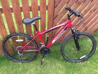"Mountain bike frame size 14 Wheel 24"""