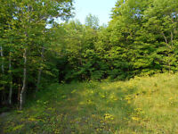 Manitoulin Island - MINDEMOYA WATERFRONT DEVELPOMENT SITE 2.45A