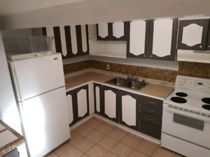 1400 + 30% utility Walkout basement apartment for rent 2 bedroom
