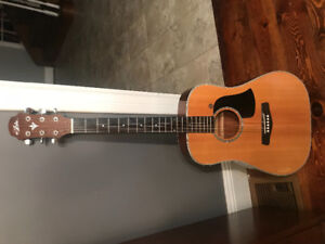 Aria 6 string Acoustic Guitar