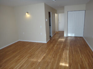 Great Downtown Location - walk to Queens, hospitals, amenities