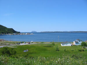 Two Blocks of Land-Frenchman's Cove-Perry Butt-NL Island Realty