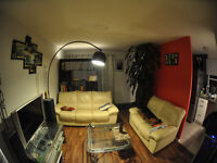 HouseMate wanted. Downtown Apt. All inclusive. Free Parking!