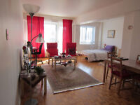 Beautiful cosy sunny 2 1/2 apartment in cote des neige