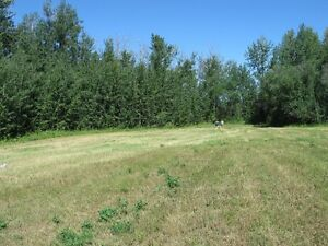 Great Acreage in Faust on Lesser Slave Lake