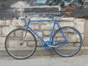 Single Speed Lightweight Commuter Road Bike for Sale