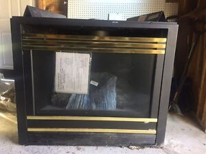 Fireplace insert for sale Cambridge Kitchener Area image 1