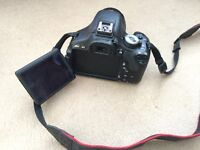 Canon 600d with EFS 18-55mm and EFS 55-250mm Lens with Battery Grip and Lowpro water resistant bag