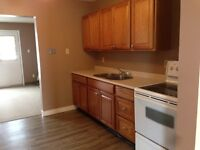 NEW UNIT,  Available beginning of November!! 1 Block from LU