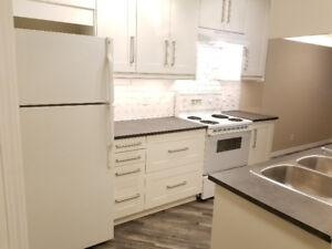 WOW! JUST RENOVATED 3BD 1BTH FENCED AVIL NOW WOW!