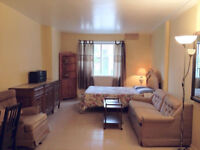 Studios for rent - Berri Suites All Included & Furnished !