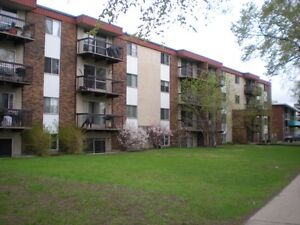 Huge 850sqft renovated condo in Oliver. Walk to everything!