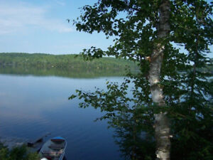 Cottage and 2 bedroom bunkie with kitchenette/bathroom
