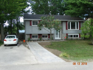 3 bedroom Home - Angus - Utilities Included - September 1