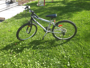 Youth Bike (reduced price)