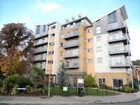 2 bedroom flat in Coombe Way, Farnborough, GU14