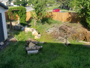 Wood stumps for free